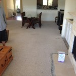 Starting to remove the old, worn, contractor-grade carpeting.