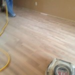 Rough then Fine Sanding and Scraping to Refinish a cupped Wood Floor.