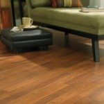 Traditional Clicette Hawaiian Persimmon laminate flooring by Columbia