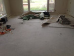 Carpet and padding removed - bare subfloor ready for clean-up and wood flooring installation