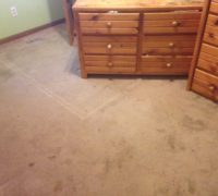 Existing carpeting, to be removed for wood flooring installation