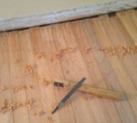 """Pulling ends"" - hand scraping ends of old red oak wood flooring planks"