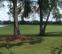 Glen Kernan Country Club Golf Course - just outside client's home.