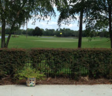 View of Glen Kernan Country Club Golf Course from client's home.