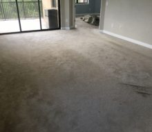 Condo carpeting to be removed