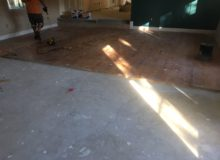 Moultrie Creek project area - pre-prep