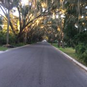 One of the prettiest streets in St. Augustine, Florida.