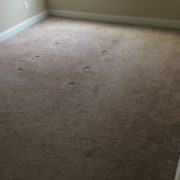 Old, commercial grade carpeting to be removed.