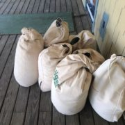 Seven bags of sawdust, from sanding white oak flooring